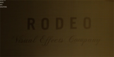 Rodeo FX